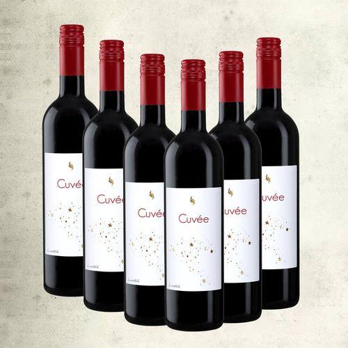 Cuvee Lectus vrhunsko vino (nagrađivano) / 6 boca slika 1
