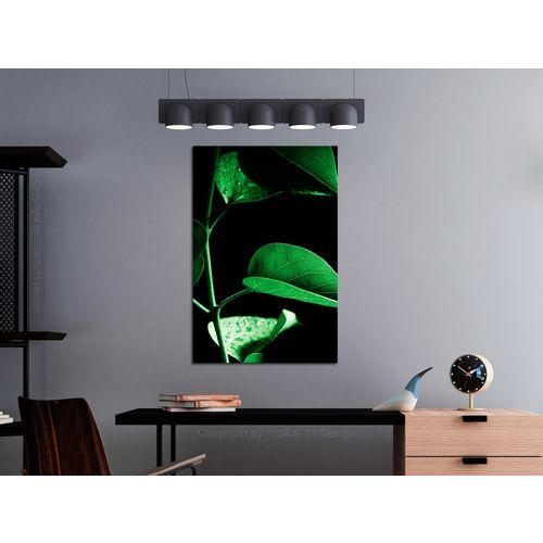 Bimago Slika Plant in Black 1 kom Vertical 80x120cm slika 2