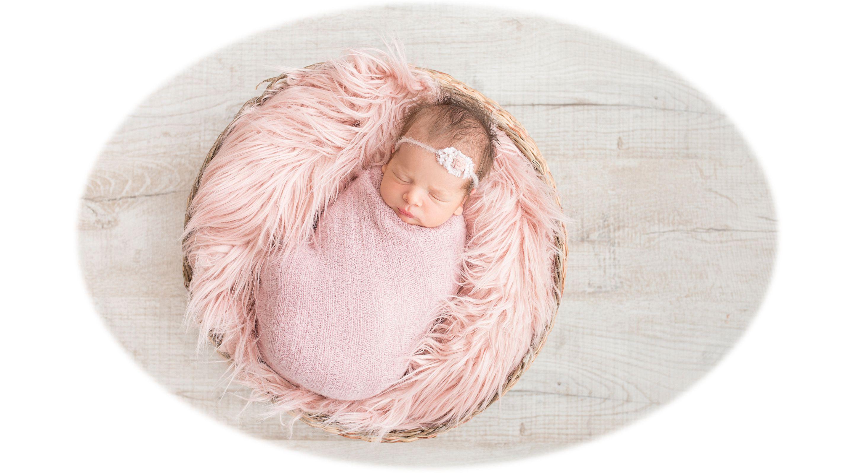 Jer bebe vole gnijezda...